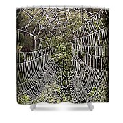 Web2hdr Shower Curtain