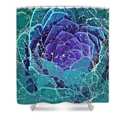 Webbed Succulent In Teal Tones Shower Curtain