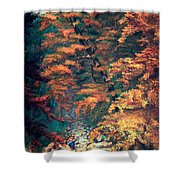 Webster's Falls Shower Curtain