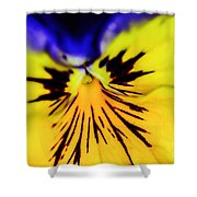 Wee Kiss Of The Sun Shower Curtain
