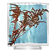 Weed Patch Shower Curtain