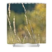 Weeds And Bokeh Shower Curtain