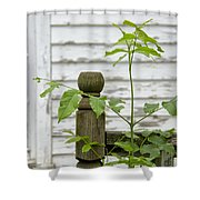Weeds Shower Curtain