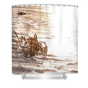 Weeds On Ice Shower Curtain