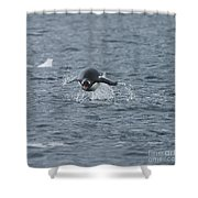 Weee... Here I Come.. Shower Curtain