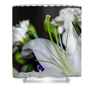 Weeping Lily Shower Curtain