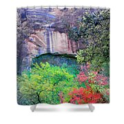 Weeping Rock At Zion National Park Shower Curtain