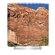 Weeping Rock In Zion National Park Shower Curtain
