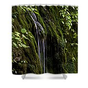 Weeping Rock Shower Curtain