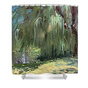 Weeping Willow Tree Shower Curtain