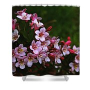 Weigela Branch Shower Curtain