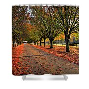 Welcome Home Bradford Pear Lined Drive-way Shower Curtain