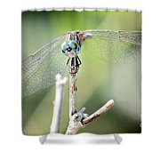 Welcome To My World Dragonfly Shower Curtain