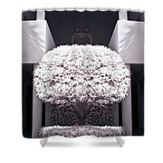 Welcome Tree Infrared Shower Curtain