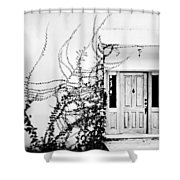 Welcome Vines Shower Curtain