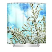 Welcome Vintage Spring Shower Curtain