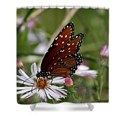 Welcomed Guest Shower Curtain