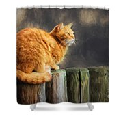 Wellness Shower Curtain
