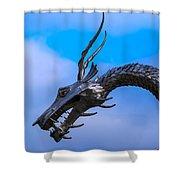 Welsh Dragon Head Shower Curtain