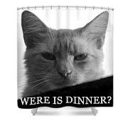 Were Is Dinner Shower Curtain