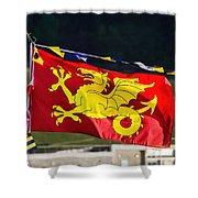 Wessex Wyvern Flag Shower Curtain