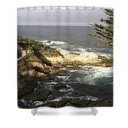 West Coast Shower Curtain
