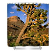 West Grand Canyon Shower Curtain