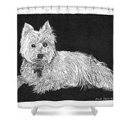 West Highland White Terrier Shower Curtain