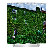 West Village Townhouse Ivy Shower Curtain