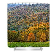 West Virginia High Shower Curtain