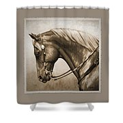 Western Horse Aged Photo Fx Sepia Pillow Shower Curtain