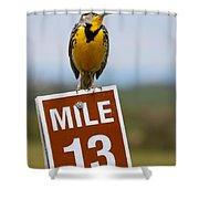 Western Meadowlark On The Mile 13 Sign Shower Curtain