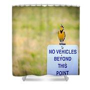 Western Meadowlark Singing Shower Curtain