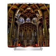 Westminster Abby Shower Curtain