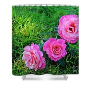 Wet Bloomers Shower Curtain