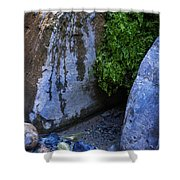 Wet Environments 1 Shower Curtain