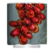 Wet Grapes Four Shower Curtain by Bob Orsillo