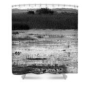 Wet Landscape Shower Curtain