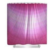 Wet Pink Shower Curtain