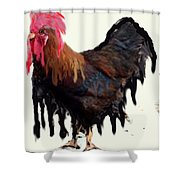 Wet Rooster Shower Curtain