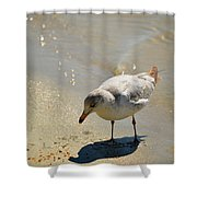 Wet Toes Shower Curtain