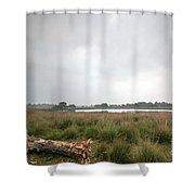 Wetland 1 Shower Curtain