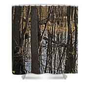 Wetland Shower Curtain