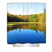 Wetland Morning Calm Shower Curtain