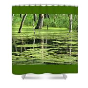 Wetland Reflection Shower Curtain