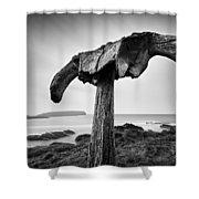 Whalebone Shower Curtain