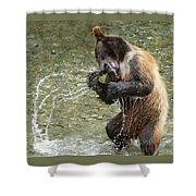 What A Show Little Bear Shower Curtain