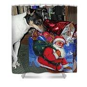 What Did Santa Bring Me Shower Curtain