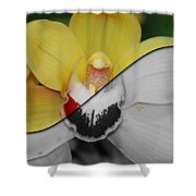 What Life Would Be Like Without Color Shower Curtain
