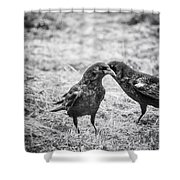 What The Raven Said Shower Curtain by Susan Capuano
